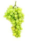 Cluster of green grape isolated on white Royalty Free Stock Image