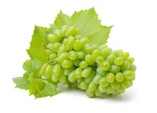 Cluster Of Ripe, Green Grapes Stock Image