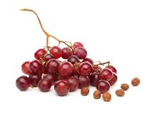 A cluster of red grapes isolated on white background Royalty Free Stock Images