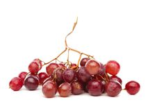 A cluster of red grapes isolated on white background Royalty Free Stock Photos
