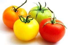 Cluster of red yellow orange and green tomatoes Royalty Free Stock Photo
