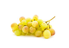 Cluster of ripe muscat grapes Royalty Free Stock Photography