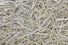Cluster of straw as texture or background Royalty Free Stock Images