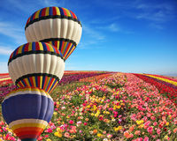 The cluster from three balloons Royalty Free Stock Images