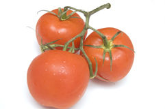 Cluster of tomatoes Royalty Free Stock Images