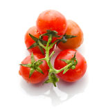 Cluster tomatoes Stock Images