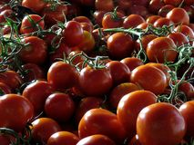 Cluster tomatoes. Tomato clusters, indispensable food in the kitchen Royalty Free Stock Photography
