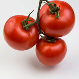 Cluster of Tomatoes Royalty Free Stock Photo