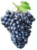 Cluster van druiven Stock Fotografie