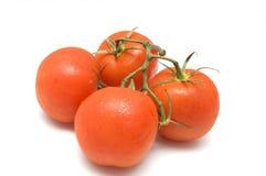 Cluster van tomaten stock afbeeldingen