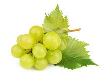 Cluster of white grapes with leaves Royalty Free Stock Images