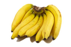 Cluster of yellow bananas Stock Photos