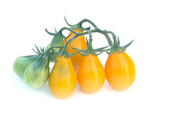 Cluster of Yelow Pear heirlom tomatoes Royalty Free Stock Photo