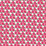 Clustered mod rose pattern Stock Images