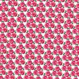 Clustered mod rose pattern Stock Images