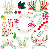 Clusters of berries Royalty Free Stock Photo