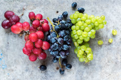 Clusters Blue Red White Grapes on Grey Background Royalty Free Stock Photography