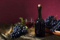 Clusters of dark grapes Stock Photography