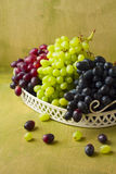Clusters of dark, red and green grapes on a white tray on a gree Stock Image