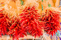 Clusters of Red Chilis Stock Images