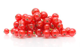 Clusters of red currant on white background Stock Photo