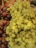 Clusters van witte en rode druiven royalty-vrije stock afbeelding