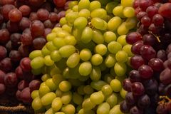 Clusters of white green and black purple grapes. Three clusters of white green and black purple grapes stock images