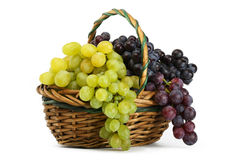 Clusters of yellow and black grapes in a basket Stock Image