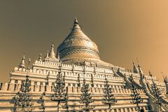 Clusters of zayats. The Shwezigon Pagoda Stock Photography