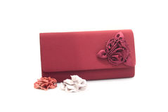 The clutch bag Stock Images