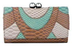 Clutch bag Royalty Free Stock Images