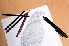 Clutch pencil with graphite drawing hawk. Stock Photos