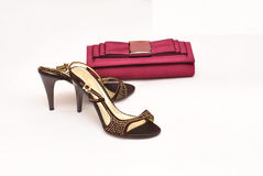 Clutch and shoes Royalty Free Stock Photography