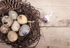 Clutch Of Speckled Easter Eggs Stock Photography