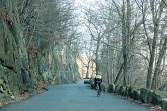 Clyclist al parco da uno stato all'altro delle palizzate Fotografia Stock