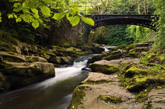 Clydach Gorge Royalty Free Stock Images