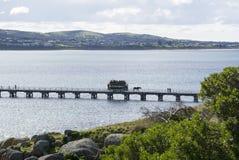 Clydesdale και συρμένο άλογο τραμ, λιμάνι του Victor, Νότια Αυστραλία Στοκ φωτογραφίες με δικαίωμα ελεύθερης χρήσης