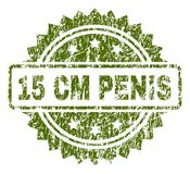 Grunge Textured 15 CM PENIS Stamp Seal. 15 CM PENIS stamp seal watermark with rubber print style. Green rubber print of 15 CM PENIS caption with scratched Royalty Free Illustration