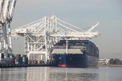 CMA CGM本杰明・富兰克林在LA口岸的货箱船  免版税库存图片