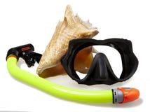 Câmara de ar para o mergulho (snorkel), o escudo do mar e a máscara grandes Imagens de Stock Royalty Free