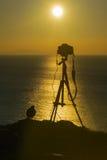 Cámara fotográfica y un pájaro contra una puesta del sol hermosa Fotos de archivo