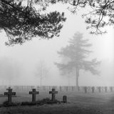 cmentarnianego gravestone cmentarza ponura mgła Zdjęcie Royalty Free