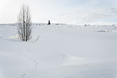 cmentarz objętych śnieg Zdjęcie Royalty Free