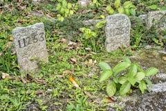 Cmentarz w Hong Kong, Chiny Fotografia Royalty Free
