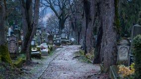 Cmentarz w sighisoara zdjęcie royalty free