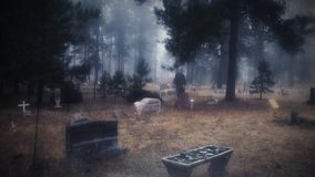 Cmentarz Widmowa postać w mgle 4K i śniegu
