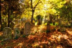Cmentarz Z Sunray W jesieni Zdjęcia Royalty Free