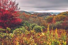 Cmentarzy pola przegapiają w dymiących górach w północnym caroli Zdjęcie Royalty Free