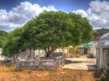 Cmentarzy widoki wokoło Otrobanda Zdjęcia Stock