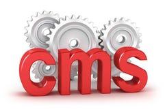 CMS: conceito satisfeito do sistema de gestão ilustração royalty free